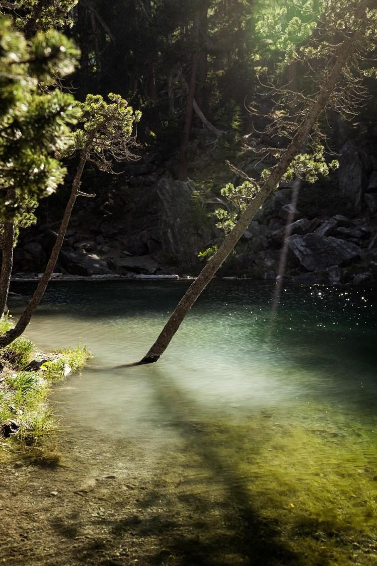 Lac vert ©Aurélien Papa Wildspot