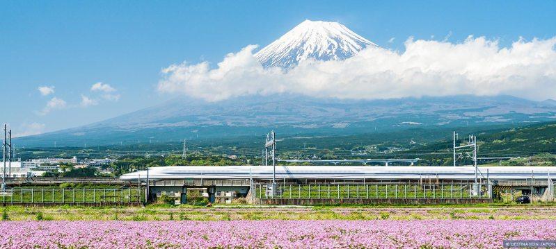 Shinkansen passant devant le Mont Fuji