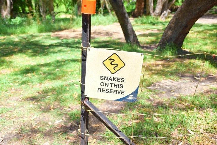 there are snakes at the secret garden in Perth