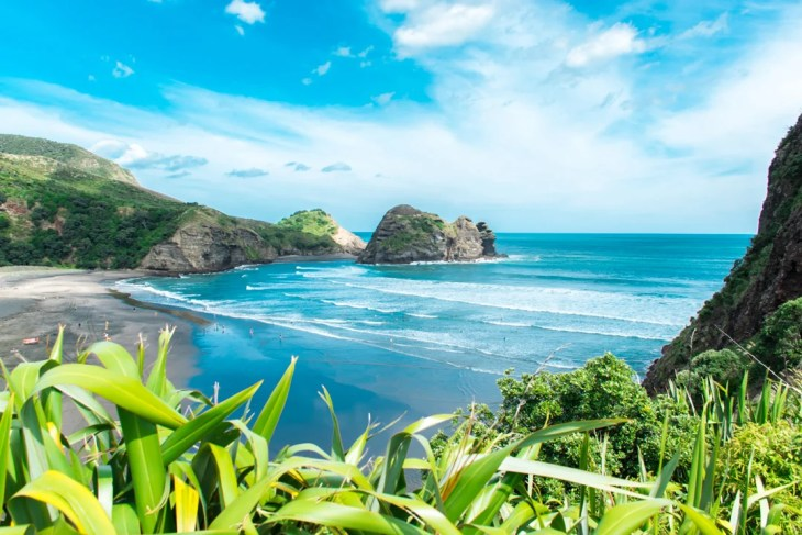 Piha beach near Auckland city