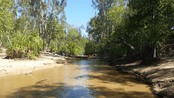 the douglas daly hot springs are another one of the free things to do in darwin