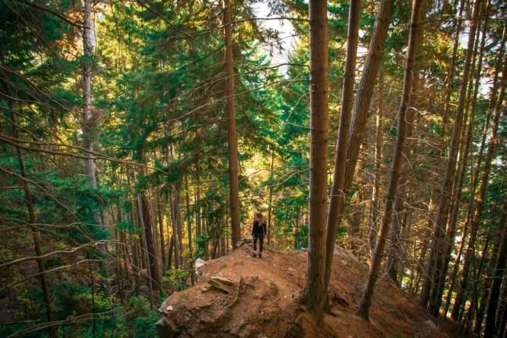 Short hikes near Queenstown