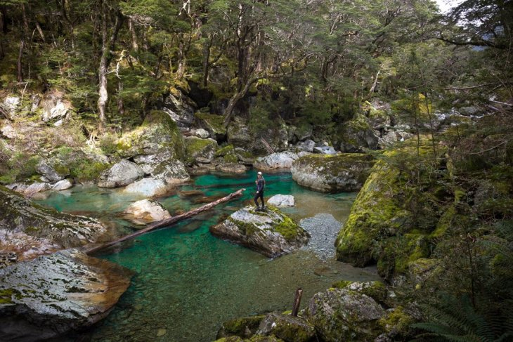 The Routeburn River on the Routeburn Track day hike in New Zealand