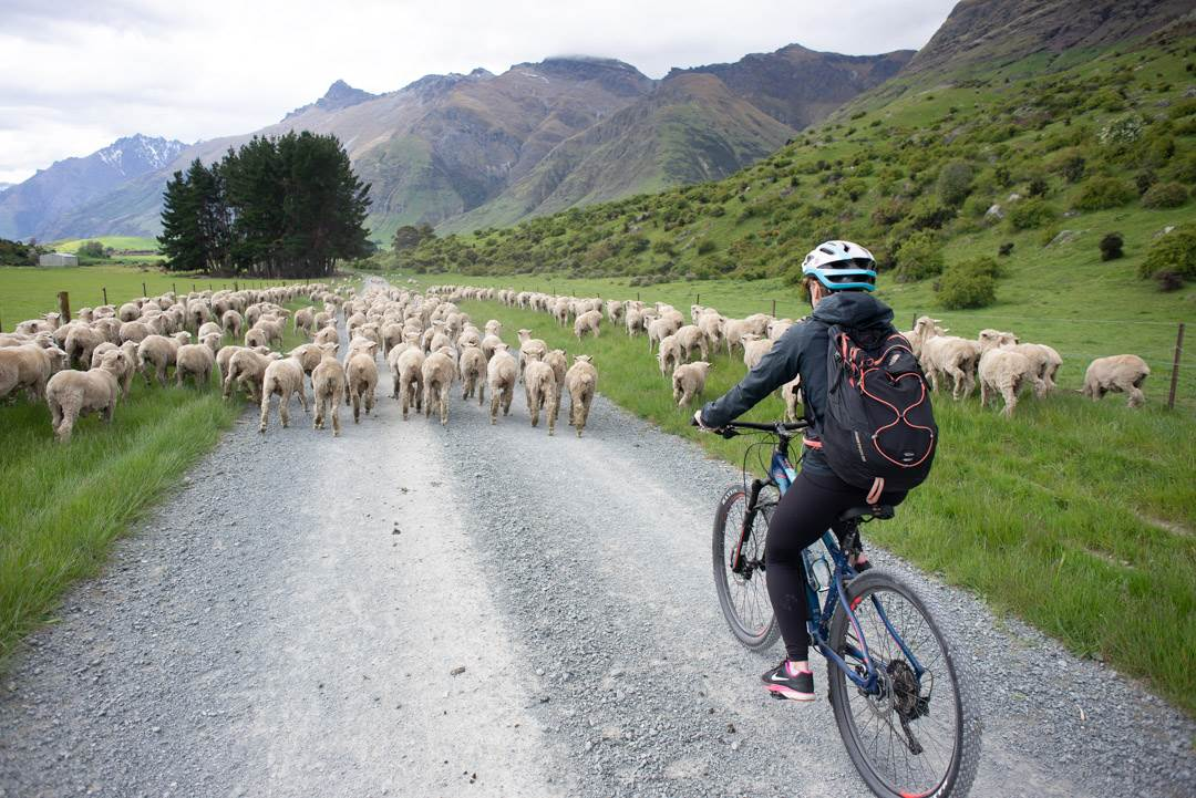 The Most Scenic Bike Ride in Queenstown