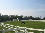 The Greenwell Foundation, Inc. is a nonprofit organization that works in partnership with the Maryland Park Service at Greenwell State Park to provide accessible and inclusive programs such as therapeutic and recreational riding lessons.