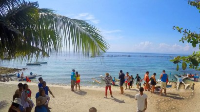 Whale Sharks in Oslob