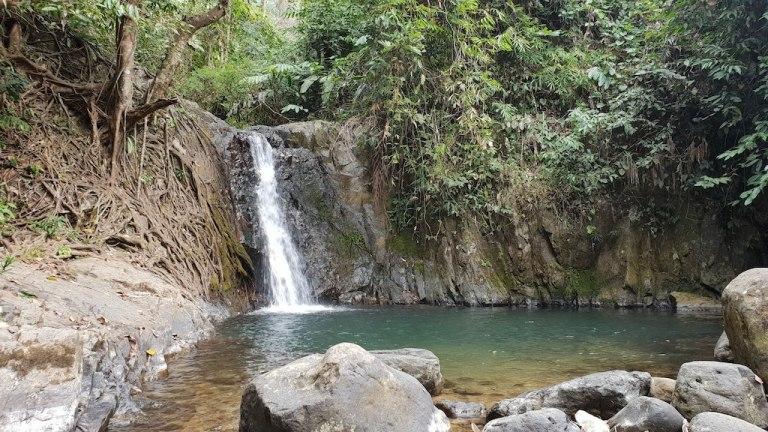 cascade Kenlon