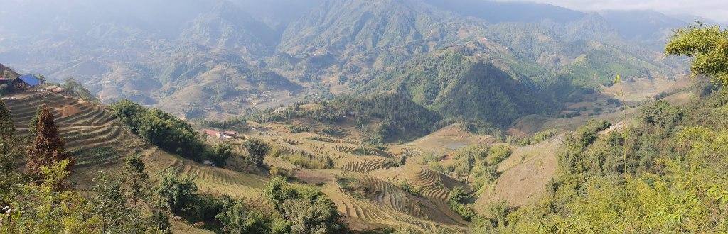 rizières Sapa