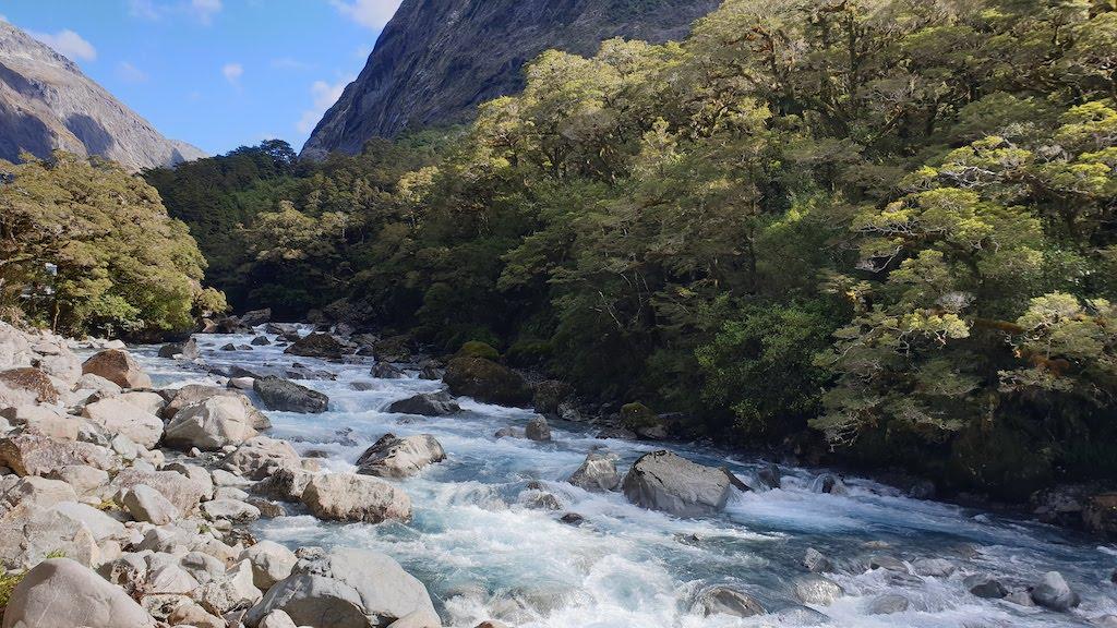 Falls Creek Milford Sound
