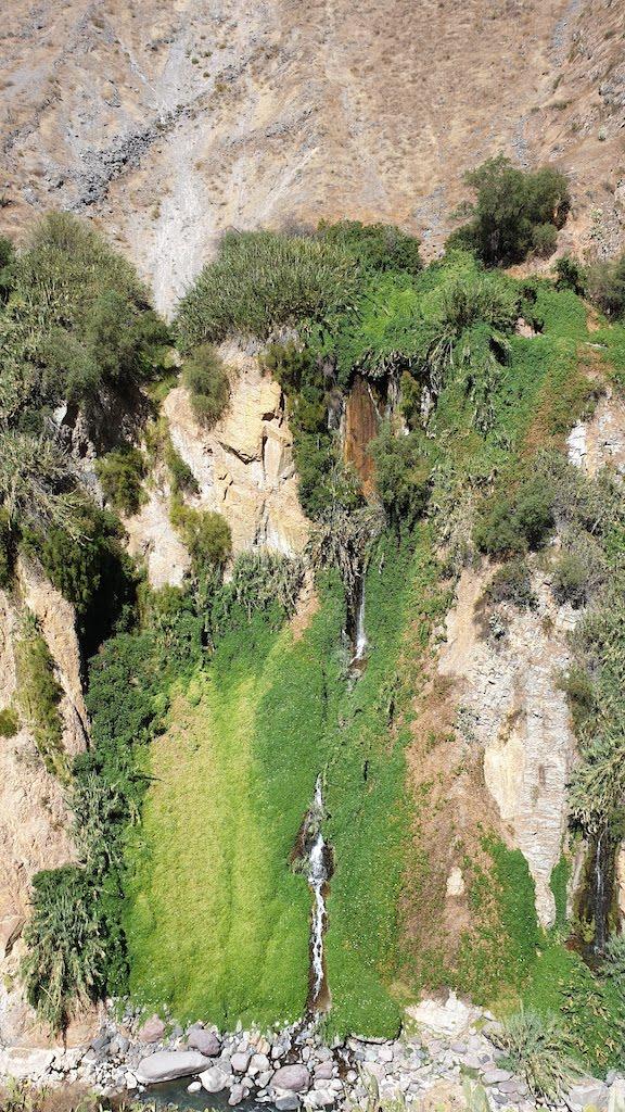 cascade dans le Canyon de Colca