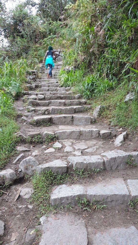 Escaliers de la montée
