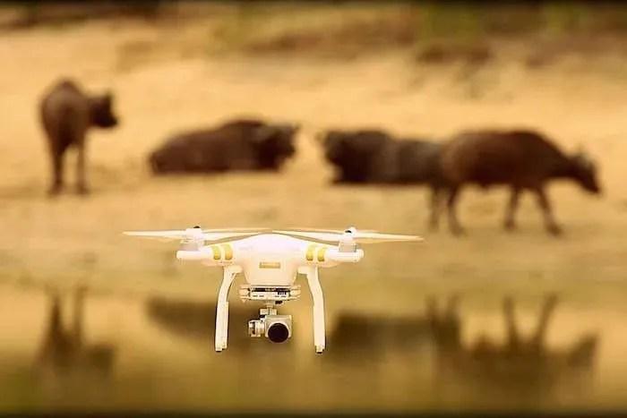 A Drone on Africa Safari