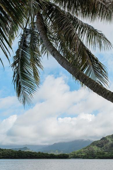 destination wedding private oahu beach 1976