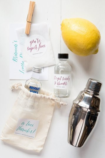 a-tini-thanks-martini-kits-from-www-evermine-com_0018