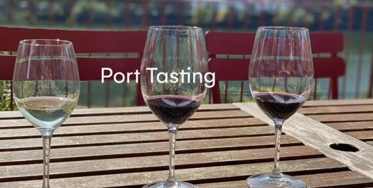 Douro Valley – Port Tasting