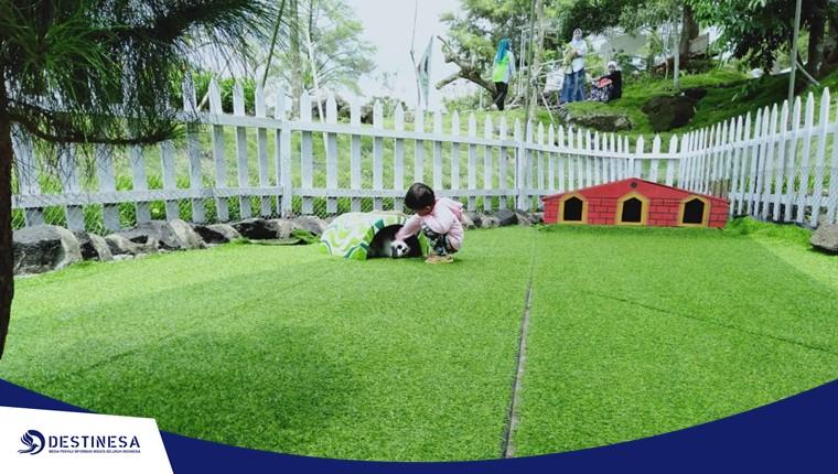 Merapi Park ~ Paket Wisata Jogja