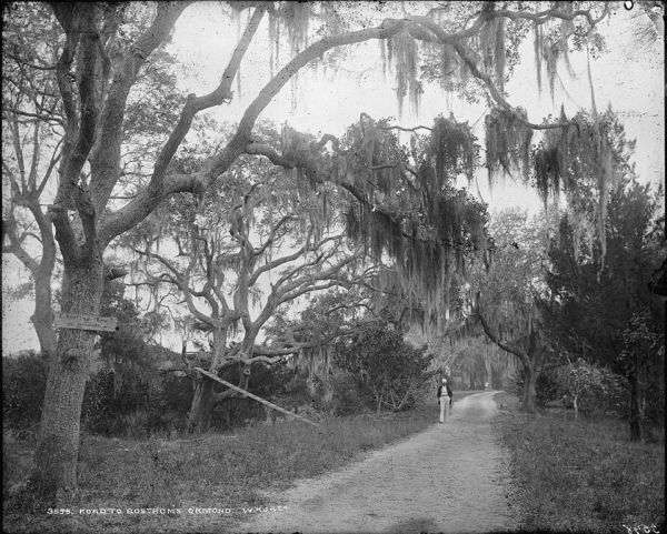 Ormaond Road