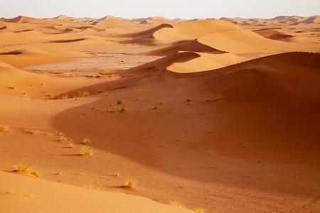 merzuga desierto chigaga erg Chebbi marruecos taller viaje fotografico travel photo