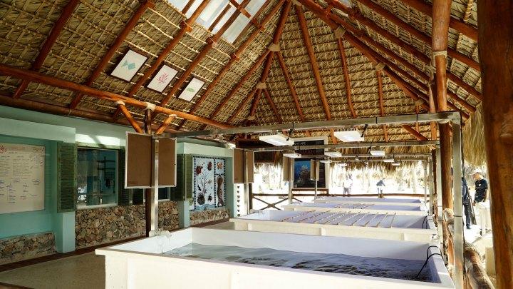 Iberostar Coral Lab República Dominicana