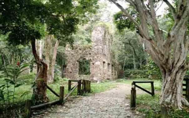 Ubatuba Dicas de Trilhas e Passeios nas Ruínas da Lagoinha (3)