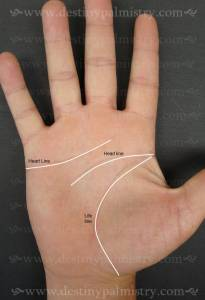 learn palmistry online, best palm reader, Brisbane master palmist, missing lines