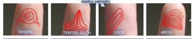 fingerprints in palmistry, reading life purpose, fingerprints to tell life purpose