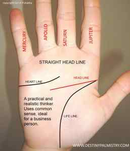 head line shapes meaning, palmistry head line straight, various head line shapes, best palm reader in the world, expert hand analyst, professional palm reader in Australia, Palm reader in the Redlands, Queensland palm reader