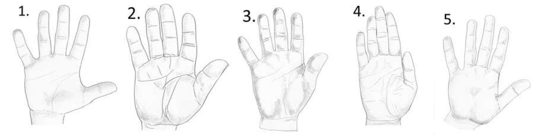 palmistry hand meanings, earth hand shape