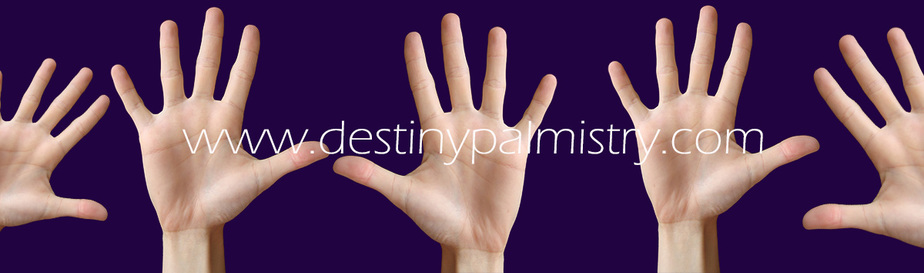 destiny palmistry, palm reading online, best palm reader, accurate palm reading, hand analysis, feedback, romantic personality from the palms