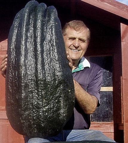 giant-vegetable-1