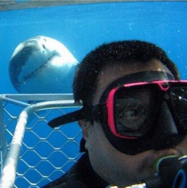 selfie-ipopgr-12-598x600