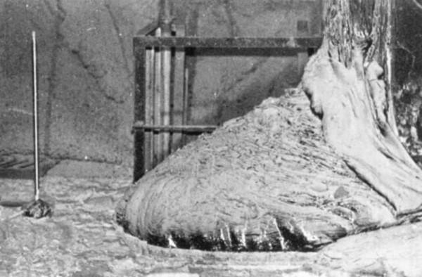 podi-elefanta-chernobil-600x394