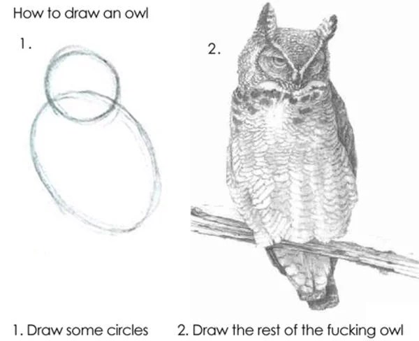 how to draw an owl meme - some circles first then a completely detailed owl drawing