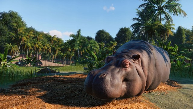 Planet Zoo is a modern take on Zoo Tycoon and it's giving ...