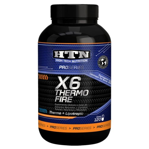 x6 thermo fire