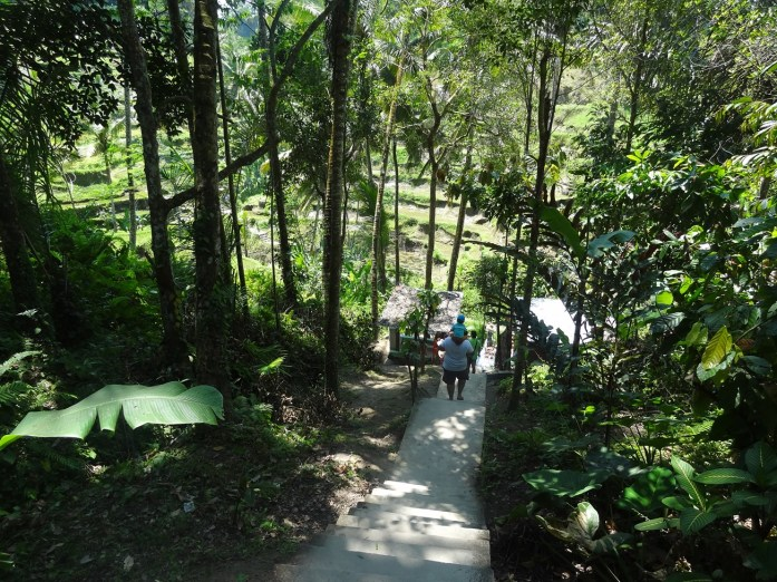Visite de la rizière en terrasse de Tegalalang, Ubud