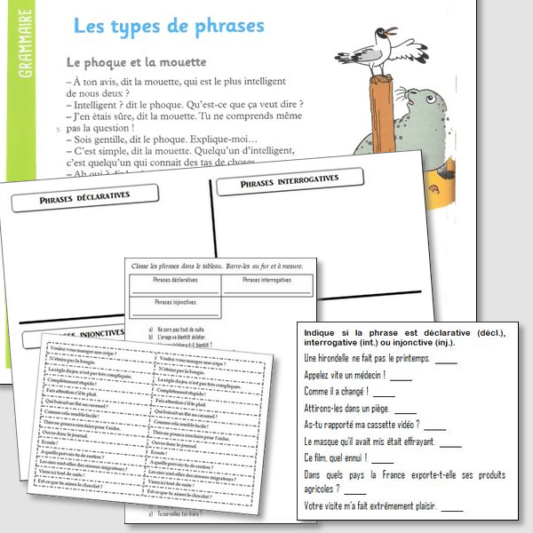 Les types de phrases – CM1/CM2