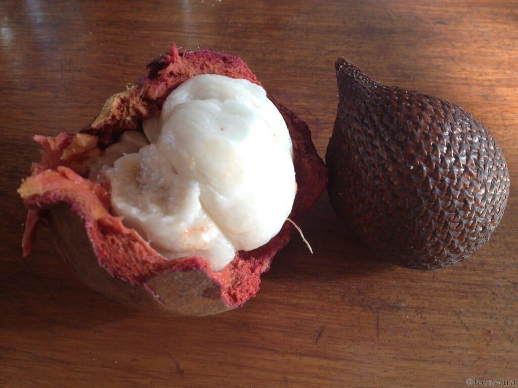 Bien se loger à Bali - Mangoustine et Snakefruit