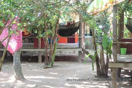 Mekong Bamboo Hut - Hamac et bananiers