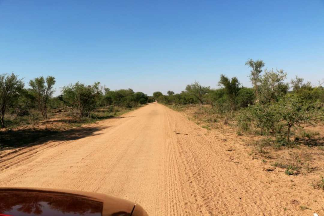 Parc Kruger - Safari pas cher en Afrique du Sud