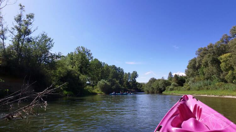 Autour du Lac du Der - Sortie kayak sur la Marne