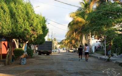 Visiter les Galapagos – mon séjour sur l'île paradisiaque Isabela