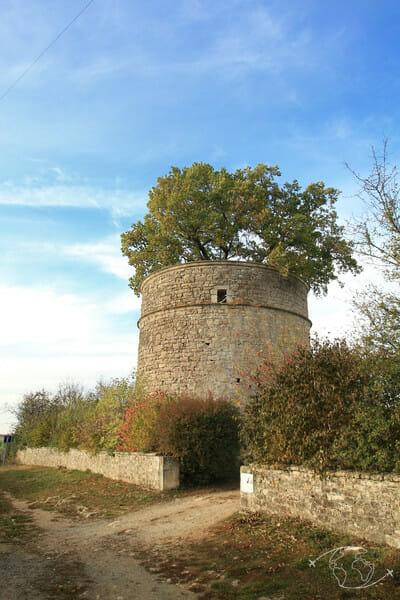 Randonner en Deux-Sèvres - Pigeonnier de Pouzay vu de l'extérieur