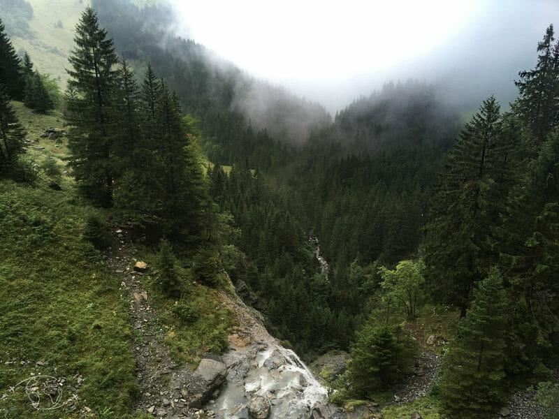Tour des Dents Blanches - Forêt sous le Pas d'Encel