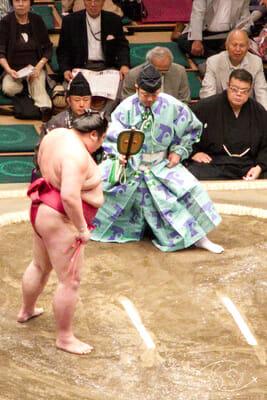Arène de Sumotori - Arbitre et Sumo à Tokyo