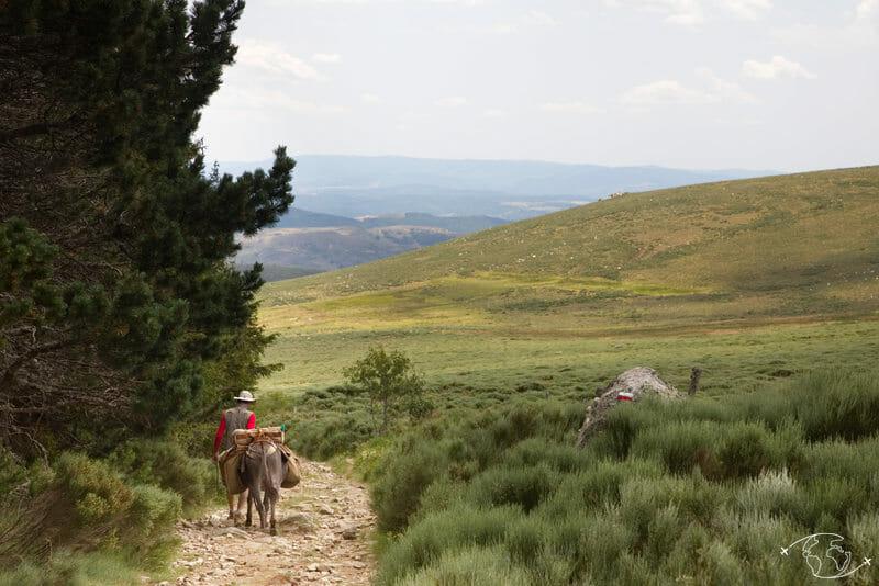 Thomas voyageant avec un âne - Randonnée avec un Ane