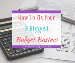 How to Fix Your 3 Biggest Budget Busters