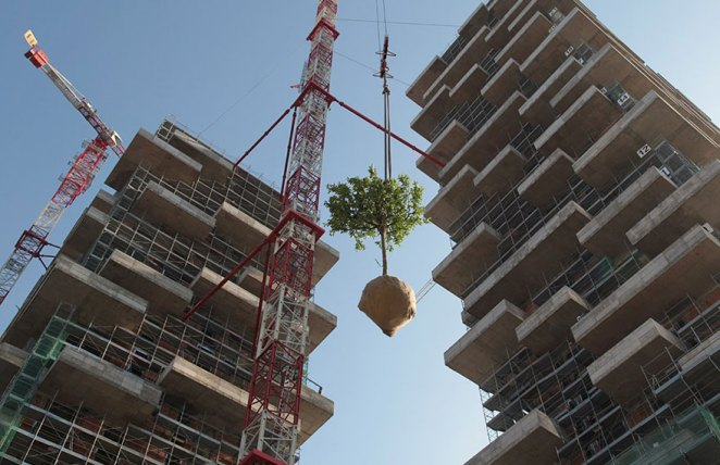 apartment-building-tower-trees-wcth06