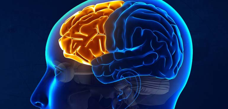 Human brain treats rejection in a similar way to the way it processes pain