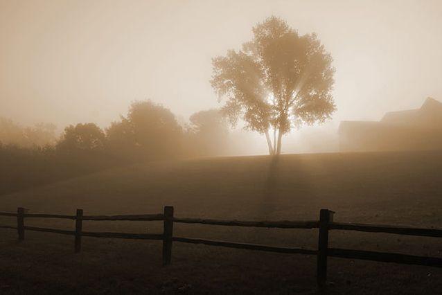 radiation-fog